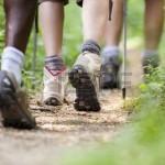 15921909-gruppo-di-uomini-e-donne-durante-escursione-trekking-nei-boschi-a-piedi-in-una-coda-lungo-un-percors